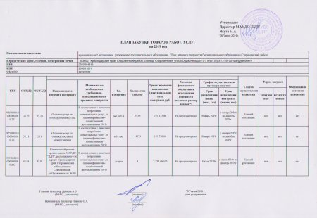 План закупки товаров, работ услуг на 2019 г.